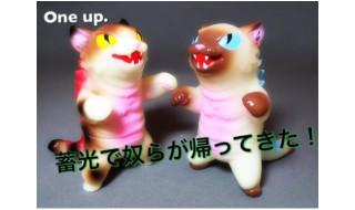 2016年5月28日11時よりショップ・One up.AKIBAカルチャーズZONE店にて「ネゴラ三毛&シャム」、「豆ネゴラガチャポン」発売!
