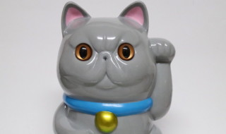 エキゾチック招き猫 ブルーヘアー