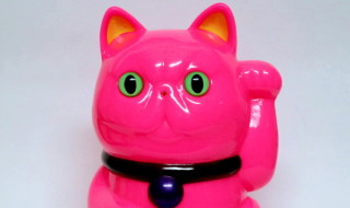 LuckyExotic cat Hot pink
