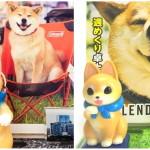 渋谷ロフトとロフトネットストアの「柴犬まるのSPECIAL FAIR」にてアーティスト・こなつ氏とのスペシャルセットが登場!